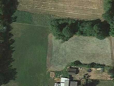 Landwirtschaftsfläche nahe Stralsund