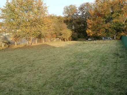 Weitläufiges Grundstück direkt in Bodenwöhr