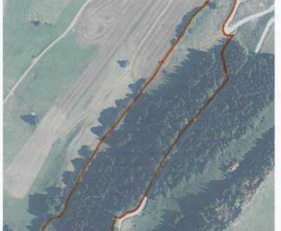 Wald mit Weidefläche bei Kranzegg im schönen Oberallgäu