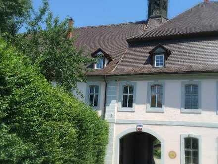 Schöne, sanierte 4-Zimmer-Wohnung zur Miete in Warthausen