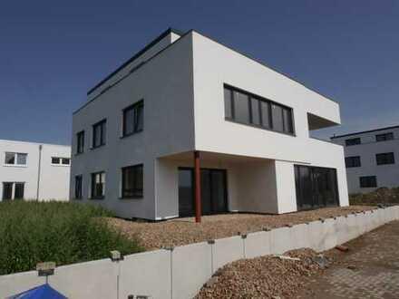 *Neubau* Luxus Immobilie für Private und Gewerbliche Nutzung (EG)