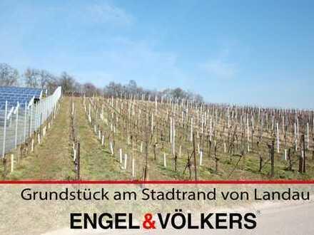 Grundstück am Stadtrand von Landau