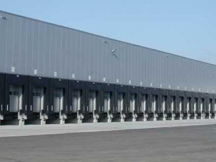 """""""BAUMÜLLER & CO."""" - neuwertige Logistikfläche 10.000 m² - Rampenlager - TOP Anbindung"""