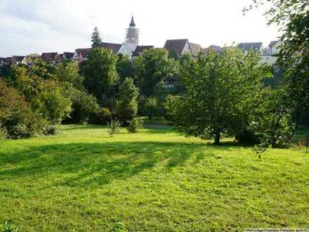 Sonniges Gartengrundstück im Herzen von Dornstetten