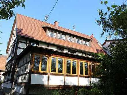 Dörrenbach: idyllisches Einfamilienhaus mit großer Terrasse