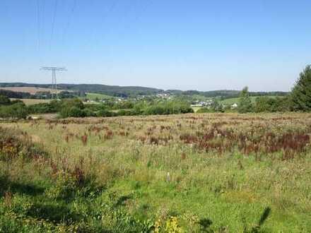 Nähe Industriegebiet Auerbach West-Baugrundstück an der Ortsumgehung Göltzschtal!