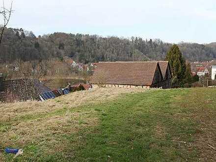 Grundstück in Hanglage mit tolle Aussicht