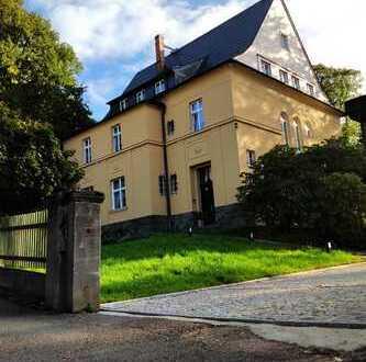 Geräumige, und sanierte 2-Zimmer-Erdgeschosswohnung in der Villa Otto Seyfert Chemnitz