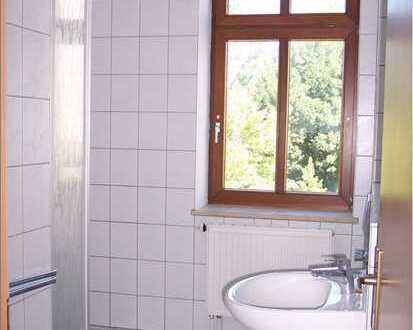 Gepflegte 1-Zimmer-Wohnung mit EBK in Chemnitz, Zentrum