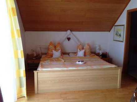 2 Zimmer Appartment in Burrweiler