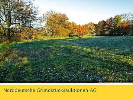 Grünfläche in 26871 Papenburg OT Aschendorf