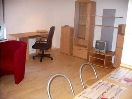 Modernisierte 1-Zimmer-Ap. Wohnung mit EBK und komplett Möbliert in Landau in der Pfalz