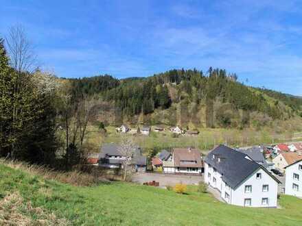 Familientraumhaus mit Blick ins grüne Tal errichten: Weitläufiges Bauland in Hanglage direkt am Wald