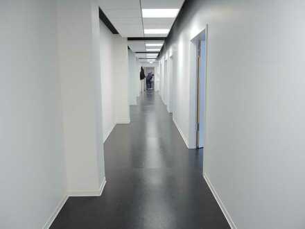 PF-Zentrum, großzügige Büroetage (Fabrikloft) in repräsentativem Gewerbeobjekt (guter Mietermix)