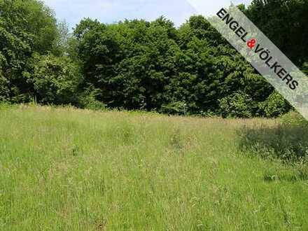 Baugrundstück am Landschaftsschutzgebiet!