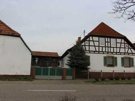 Berg - Neulauterburg: Baugrundstück 3500 m² mit Bestandsgebäuden z.B. für Pferdeliebhaber