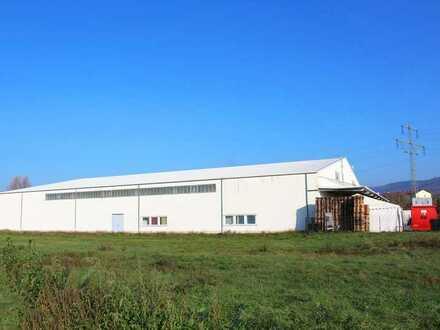 Lager- und Produktionshalle – Deckenhöhe 10,65 m
