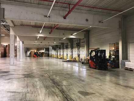 """""""BAUMÜLLER & CO."""" ca. 2.000 qm Hallenfläche - ebenerdige Zufahrt - sofort verfügbar"""