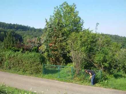 Schönes, sonniges Gartengrundstück im Landschaftsschutzgebiet südlich von Schorndorf