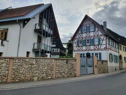 Reizvolles Anwesen mit zwei besonderen Wohnhäusern (Designerhaus trifft Barockhaus)