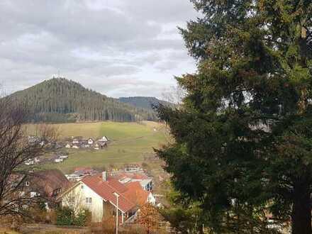 Gemütliche kleine 1-Zimmer-Wohnung in Baiersbronn
