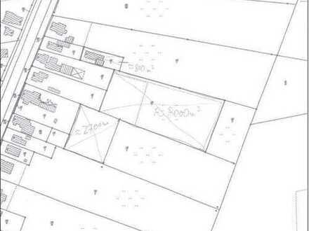 WAHNSINN *Bungalow, 1,5 ha Land, Schwimmteich, Reitplatz