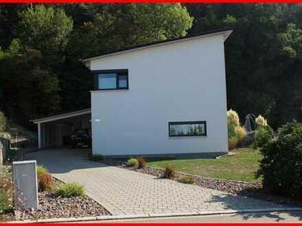 Einfamilienwohnhaus in herrlicher Lage von Waldshut