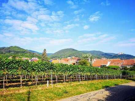 Ehm. Winzeranwesen mit besonderem Weinkeller in Ortsrandlage u. wunderbarem Blick zum Haardtrand!