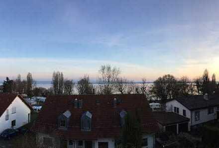 DHH mit atemberaubender Aussicht auf See und Berge in Immenstaad am Bodensee, Bodenseekreis