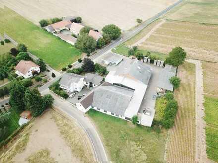 Großzügiges Gewerbeareal mit Lager-, Büro- und Produktionsflächen in Biedesheim
