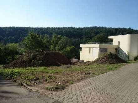 Exklusive EG-Wohnung in guter Lage von Birkenfeld!