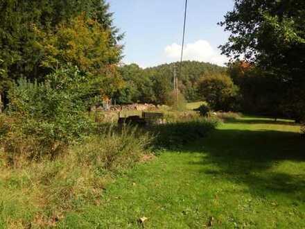 Grundstück im Naturpark Pfälzer Wald...ruhig und doch zentral