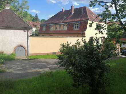 Kuschelige Wohnung in 2er WG in Dossenheim