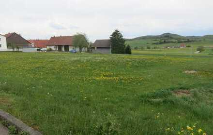 Wohnhaus mit Büro, Lager, Halle und Gewerbebauplatz