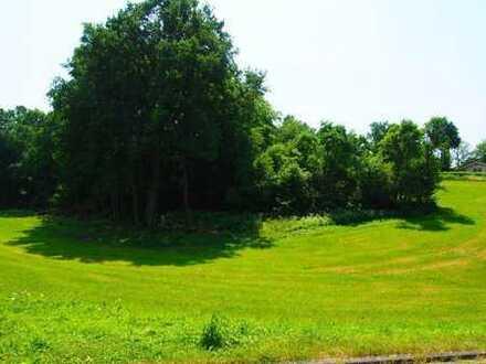 Direkt an der Bebauungsgrenze!Sonniges Baugrundstück in idyllischer, naturnaher Lage ohne Bauzwang..