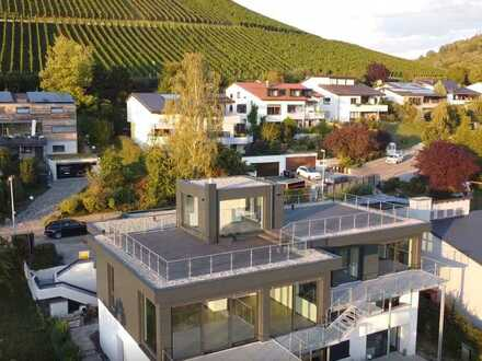 Exclusives Terrassenhaus am Weinberg in Metzingen