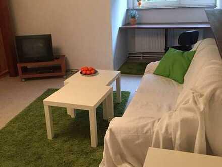 Großzügiges, möbliertes Ein-Zimmer-Apartment im Main-Kinzig-Kreis, (Ober-)Rodenbach