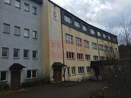 Fabrikgebäudekomplex in Lichte, Thüringen -Mehrfachnutzung möglich, ehemalige Porzellanmanufaktur-