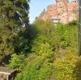 Einfamilienhaus mit Garten in Heidelbergs bester Lage direkt am Heidelberger Schloss