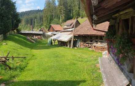 *943_1*Traumhaft wohnen im typischen Schwarzwaldstil*großes Gelände*tolle Lage*Tierhaltung*Poppeltal