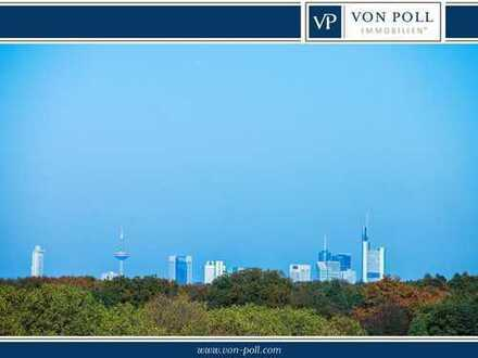 Über den Dächern von Neu-Isenburg mit traumhaftem Skylineblick