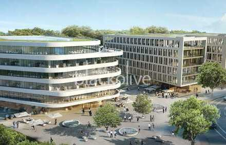 Bad Homburg || 1.000 m² - 12.696 m² || EUR 18,00