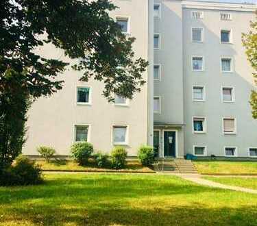Neu renovierte 3 Zimmerwohnung in Eschwege