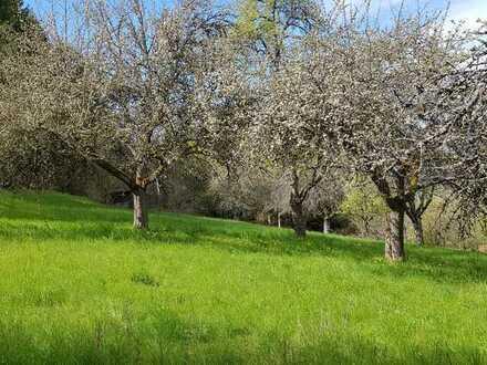 Gartengrundstück / Freizeitgrundstück im Naturschutzgebiet