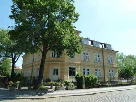 Sonnige Familienwohnung im schönen Niedersedlitz - neu renoviert!!!