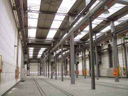 1.290,00 m² lichtdurchflutete Hallenfläche A38