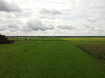 Grünlandfläche in Nortmoor, ca. 3,7 hektar. Gegen Höchstgebot!