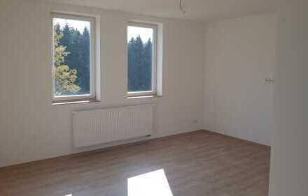 *Erstbezug nach Komplettsanierung! Tolle 3,5 Zi. Wohnung in Ernstthal in Nähe Glaswerk, 107m²*