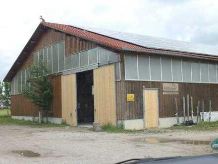 Hochwertige Halle mit großem Grundstück - Nähe Hofstetten