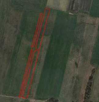 GI** Wiesen- und Weidefläche im Ampertal bei Palzing